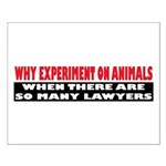 Why Experiment on Animals Small Poster
