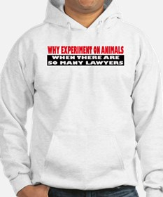 Why Experiment on Animals Hoodie