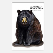 American Black Bear Postcards (Package of 8)