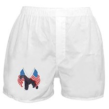 Kerry Blue with flag Boxer Shorts