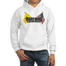 Right Wing Extremist Flags Hoodie