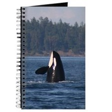 Journal-Whale (Orca)