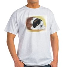 sleeping saint bernard Ash Grey T-Shirt