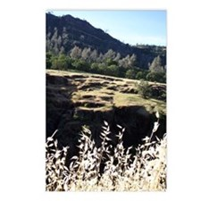 Wheat and Canyon Postcards (Package of 8)