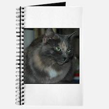 Blue Cream Journal