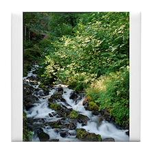 Peace Like a River Tile Coaster