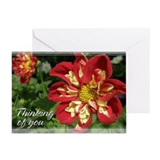 Red Dahlia Thinking of You Card 5x7
