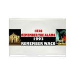 Remember The Alamo Rectangle Magnet (100 pack)