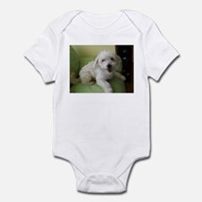 Cute Chinese crested Infant Bodysuit