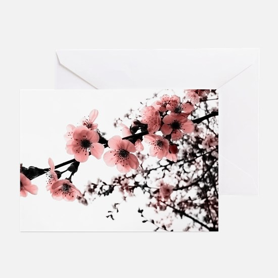 Cherry Blossoms Greeting Cards (Pk of 20)