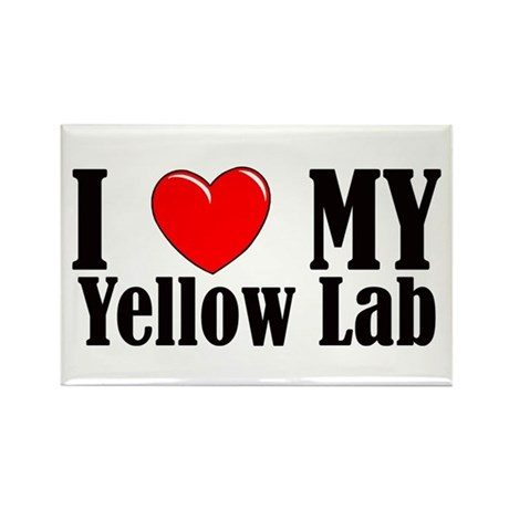 I Love My Yellow Lab Rectangle Magnet