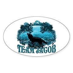 Team Jacob Sticker (Oval 50 pk)