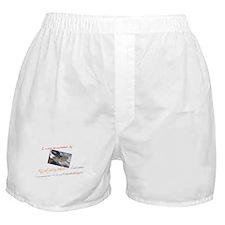 Eyjafjallajökull Volcano Boxer Shorts