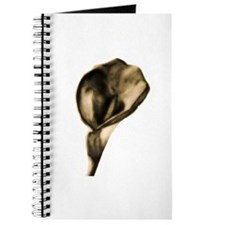 Calla Lily Journal