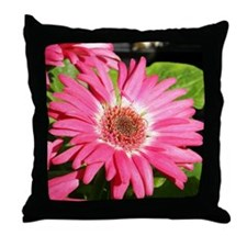 Gerber / Gerbera Daisy Throw Pillow