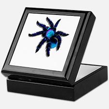 Big, Blue Tarantula Keepsake Box