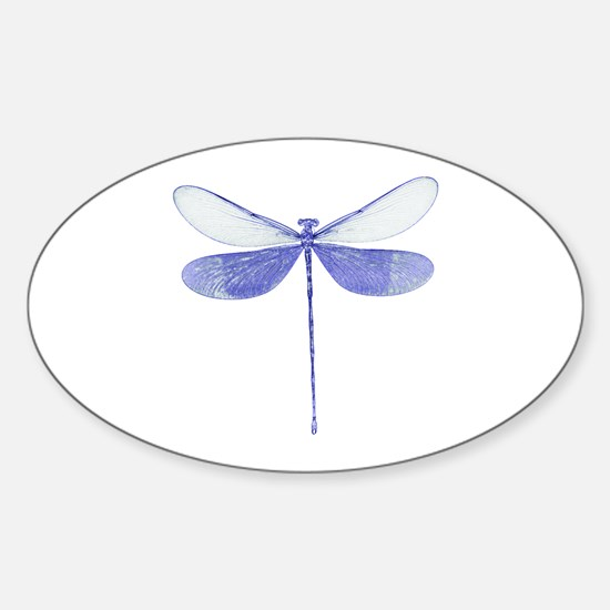 Blue Dragonfly Oval Decal