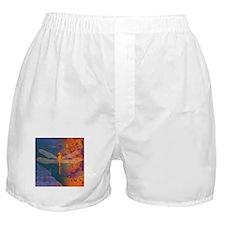 Flaming Dragonfly Boxer Shorts