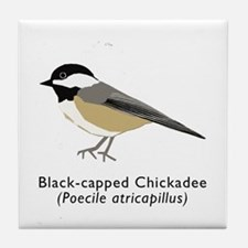black-capped chickadee Tile Coaster