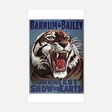 Vintage Circus Tiger Decal