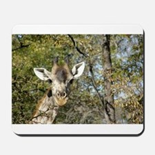 Happy Giraffe Mousepad