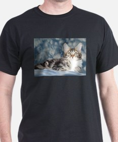 Maine Coon Tabby Black T-Shirt