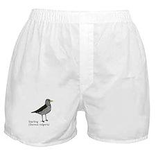 starling Boxer Shorts