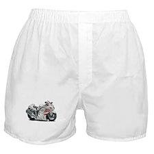 Hayabusa White-Red Bike Boxer Shorts