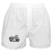 Hayabusa White Bike Boxer Shorts