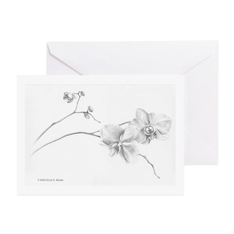 Moth Orchid Greeting Cards (Pk of 10)
