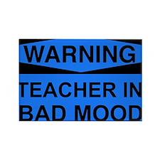 WARNING Teacher Blue Rectangle Magnet (10 pack)