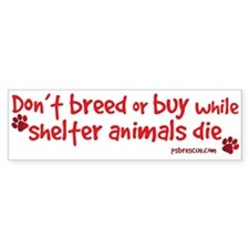 Cute Shelter dogs Bumper Sticker