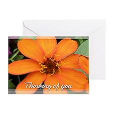 Orange Zinnia Thinking of You Card 5x7
