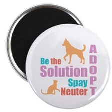 New Be The Solution Magnet