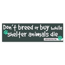 dont breed Bumper Bumper Sticker