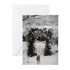JUBA LEE RR SNOW GARDEN Greeting Cards (Pk of 20)