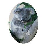 Koala Oval Ornaments