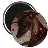 Italian greyhound Magnets