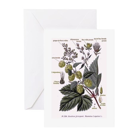 hops Greeting Cards (Pk of 20)