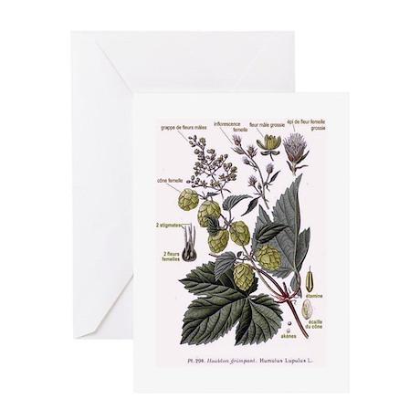 hops Greeting Card