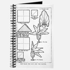 The Palm, the Lily, and the C Journal