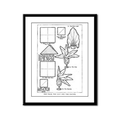 The Palm, the Lily, and the C Framed Panel Print