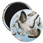 Flying Homer Pigeons Magnet