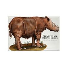 Sumatran Rhinoceros Rectangle Magnet