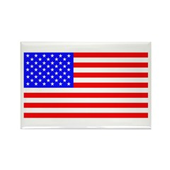 US Flag Rectangle Magnet (100 pack)