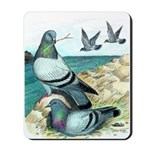 Rock Doves Mousepad
