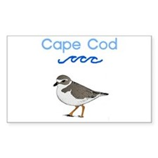 Cape Cod Piping Plover Decal