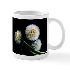 Make a Wish Mug