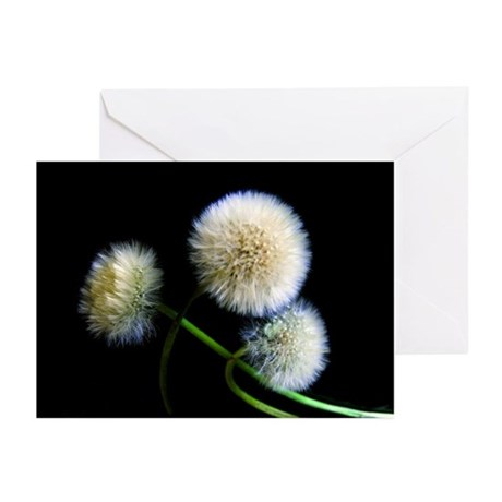 Make a Wish Greeting Cards (Pk of 10)