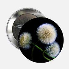 "Make a Wish 2.25"" Button"